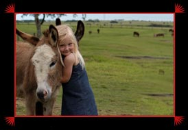 Little girl hugging a donkey